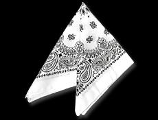 White Paisley Bandanas Dozen