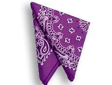 Purple Paisley Bandanas Dozen