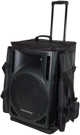 Large Speaker Bag